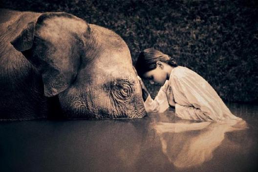 mujer-elefante1.jpg